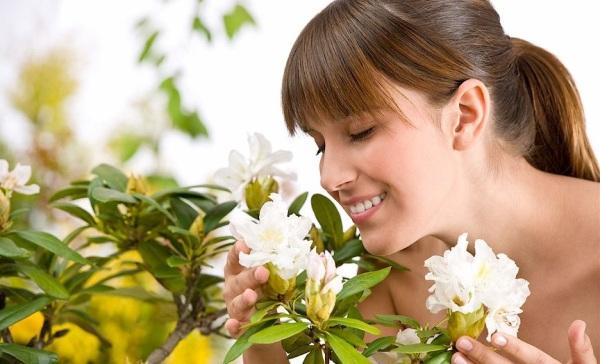 Аромат белых цветов
