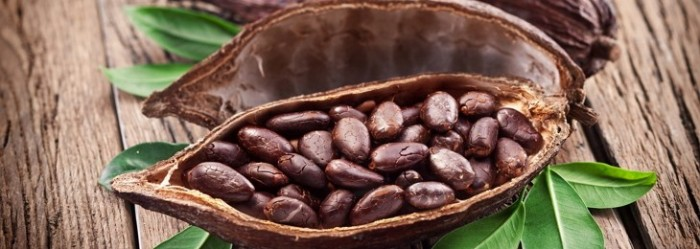 Масло какао заставка
