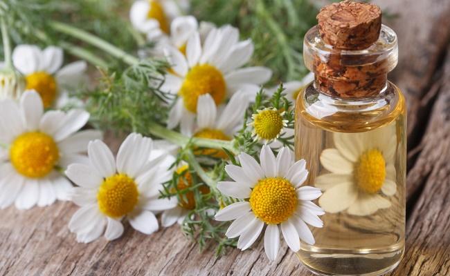 Цветы на деревянном столе